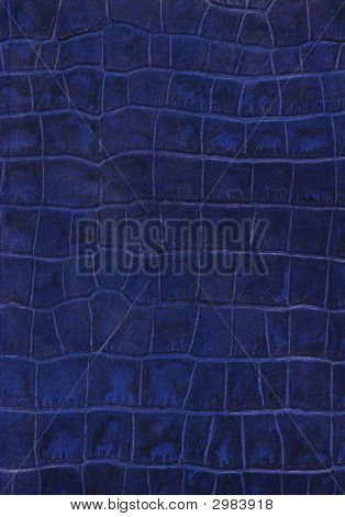 Blue Reptile Leather Imitation Texture