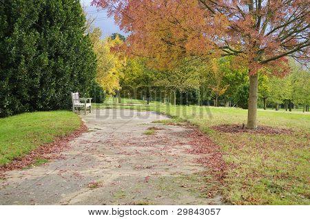 English Autumn Parkland