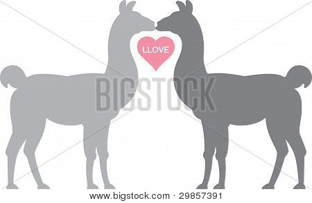 Llamas in Llove