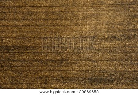 Wooden Rectangular Piece