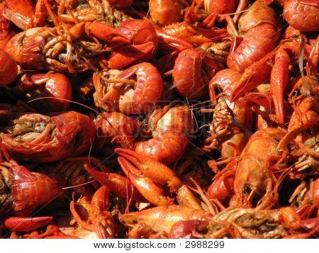 Crawfish Spread Closeup