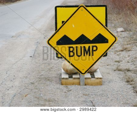 Roadside Warning Bump In The Road