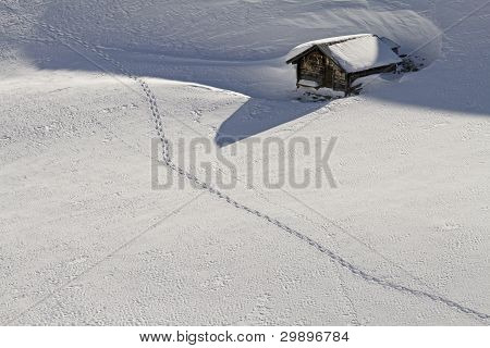 Snowshoe Track in front of hut