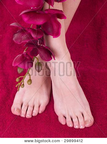 Healthy and elegant female feet with the orchid