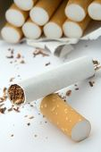 pic of marlboro  - broken cigarette on white background cigarettes in background distance blur