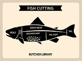 Fish Meat Cutting Vector Vintage Chart, Cuts Guide Diagram. Illustration Of Chart Cut Fish, Tail And poster