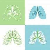 Lunges. Lung And Bronchus Vector Illustration, Healthy Lungs Tree With Leaves, Bronchi Human Respira poster