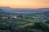 View Over Vineyards In Wine Region Brda On Sunrise To Town Nova Gorica With Julian Alps And Triglav  poster