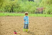 Work At Farm. Mother Nature Concept. Planting Seedlings. Child Having Fun With Little Shovel And Pla poster