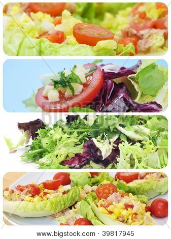 a collage of different plates of salads