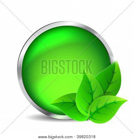 Green Glass Button