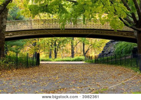 Bridge/ Foot Bridge