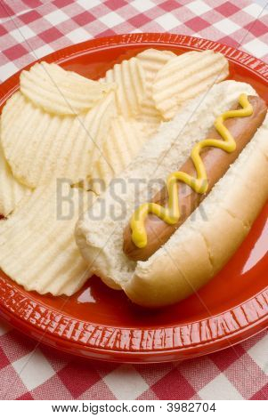 Grilled Hot Dog With Chips On Picnic Table Pattern