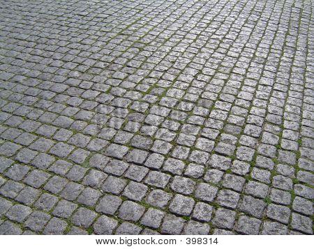 Ollissipo's Pathway