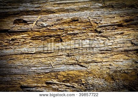 Wood Cracks Texture Background