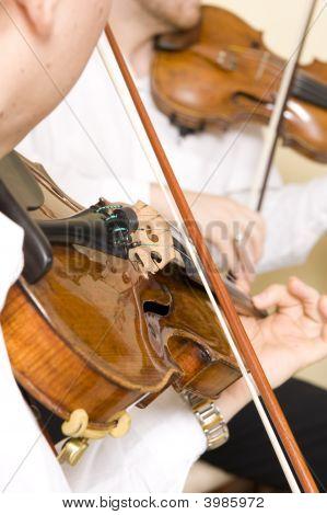 Músico profesional
