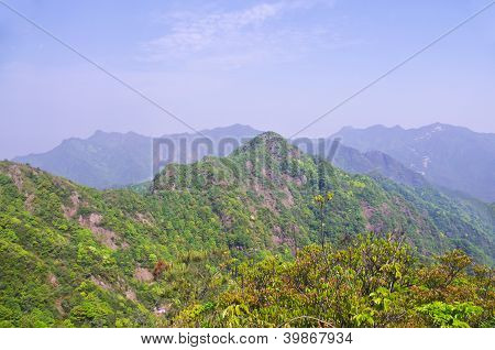 spring at nanling ridge of china