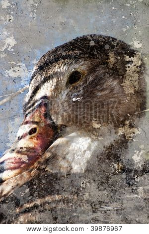 Artistic portrait with textured background, duck head
