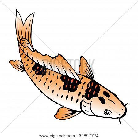 Painting Of Carp Fish