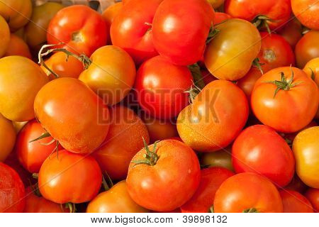 background of fresh tomatos for sale