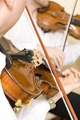 picture of string instrument  - Professional violinists performing as part of a string quartet - JPG