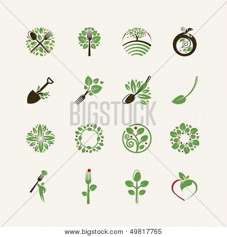 Set of organic food icons