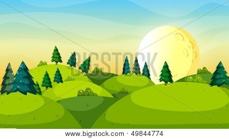 Illustration of the pine trees above the hills