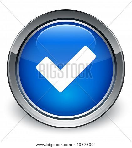 Validate Icon Glossy Blue Button