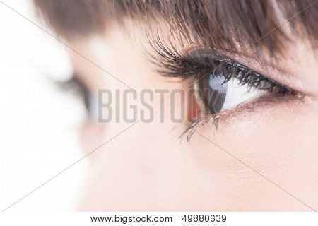Beautiful woman eyes with long eyelashes. Asian model. Studio shot.
