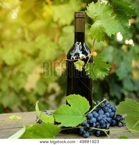 Wine concept. Food and drink background with red wine, fresh bunch of grapes and wine bottle over nature background