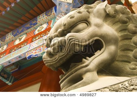 Lion Head In Beijing