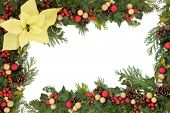 Christmas and thanksgiving floral border with yellow poinsettia flower, baubles and winter greenery.