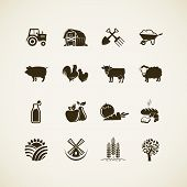 stock photo of chickens  - Set of farm icons  - JPG
