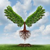 stock photo of evolve  - Moving up and the power of success with a growing tree in the shape of wings that has emerged out and has taken flight upward to opportunity as a business concept of the evolution of successful leadership and strategic planning - JPG