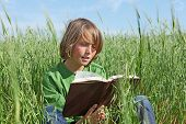pic of reading book  - happy child sitting reading book outdoors in summer - JPG