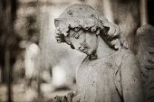 stock photo of cherub  - A sculpture of an Angel holding flower tombstone  - JPG