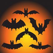 foto of vampire bat  - set of vector black vampire bats on Halloween - JPG