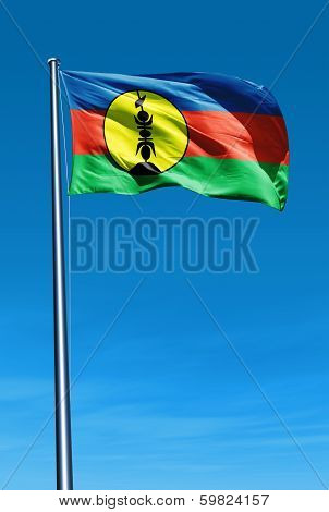 New Caledonia flag waving on the wind
