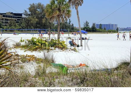 Volleyball Area On Siesta Beach