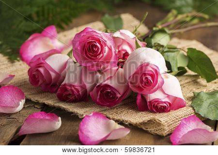 Pink Roses On Burlap