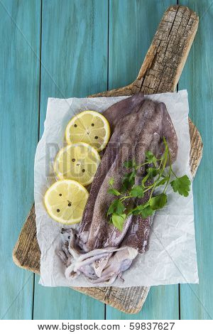 Fresh Squids