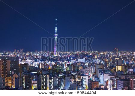 Tokyo, Japan cityscape with Tokyo Skytree.
