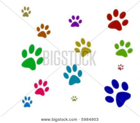 colorful Paw Drucke