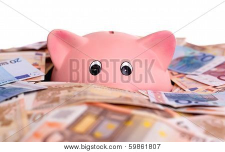 Unique Pink Ceramic Piggy Bank Drowning In Money