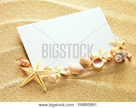 Empty white card with two starfishes and shells is lying on a sea sand summer sunny background