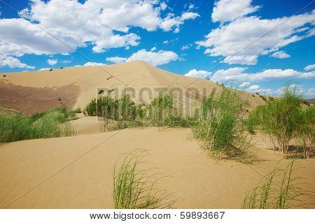 Hot sandy desert
