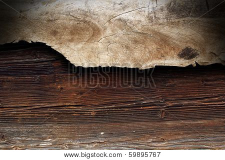 Poplar Piece Of Wood