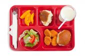 picture of school lunch  - A school lunch tray on a white background with copy space - JPG