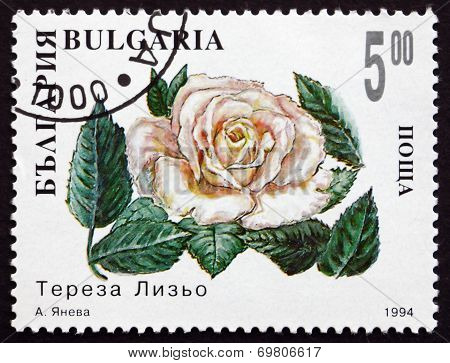 Postage Stamp Bulgaria 1994 White Rose