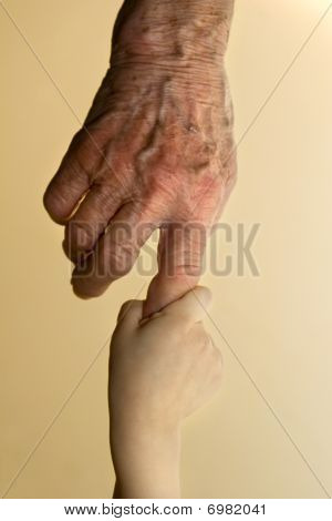 hands of grandmother and grandchild